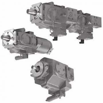 Tokyo Keiki/Tokimec P100V-LS-11-CCG-10-J Variable Piston Pump